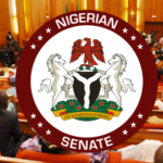 We Are Not Desperate To Pass The Social Media Bill - Senate