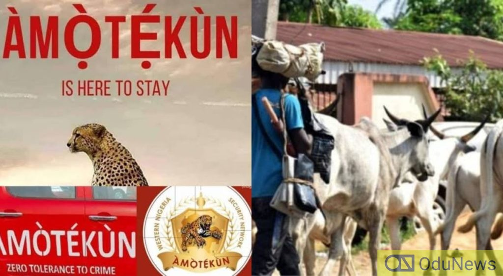 Amotekun A Monster And Threat To Democracy - Miyetti Allah
