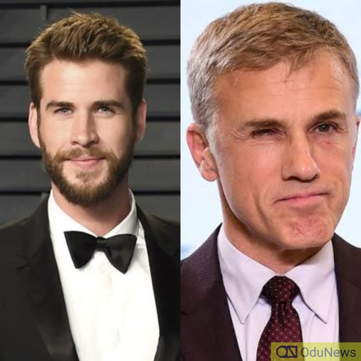 Liam Hemsworth and Christoph Waltz will play men who find themselves on opposite sides