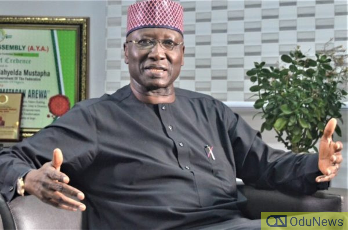 SGF Mustapha Reveals Why Buhari Can't Sack Security Chiefs