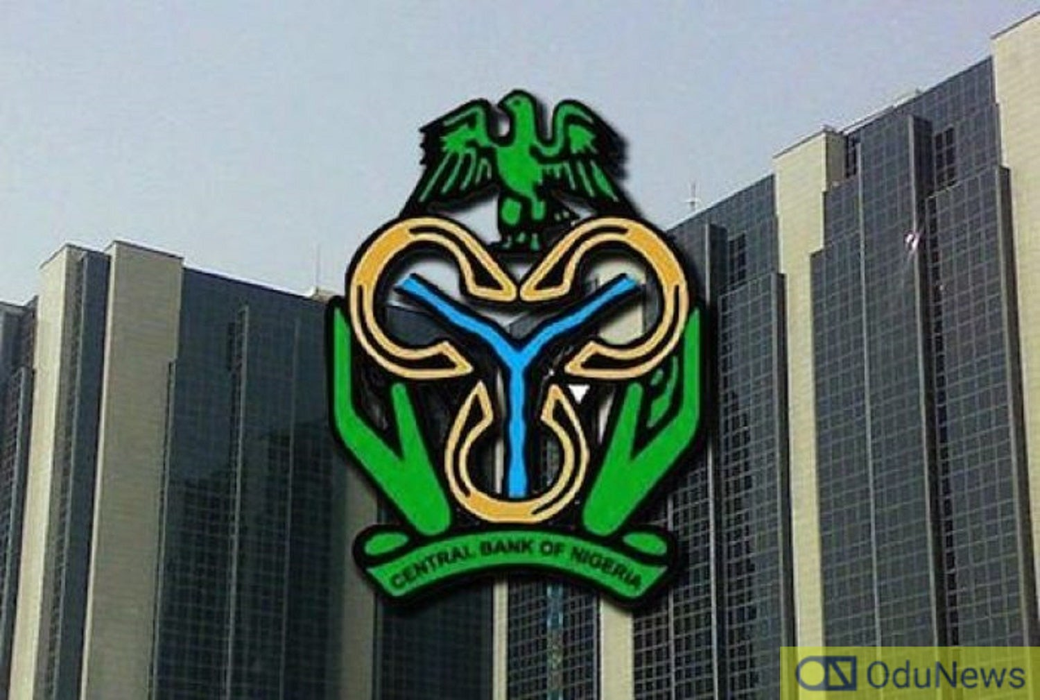 """CBN Bars """"Third Parties"""" From Purchasing Forex Routed Via Form M"""