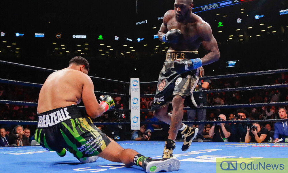 Wilder knocks out an opponent