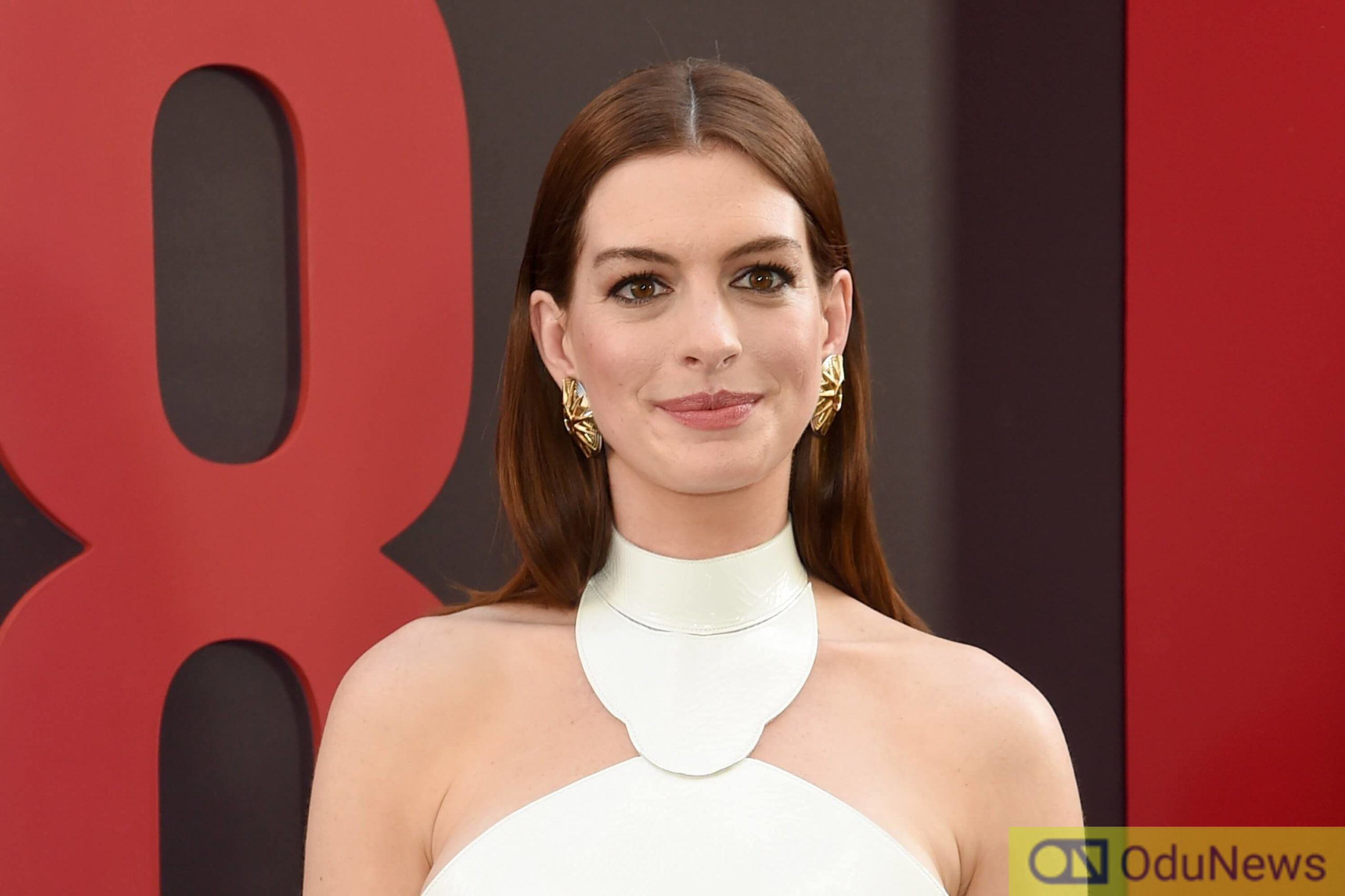 Anne Hathaway is a great actress but her talent can't save the film from its downward plunge