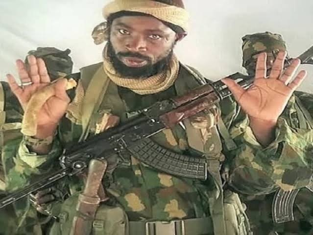 Boko Haram Leader, Shekau, Plans To Surrender — Seeks Amnesty From Nigerian Government
