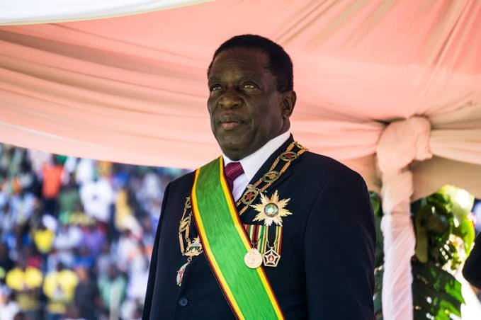 Zimbabwe Councillor Who Called President 'A Fool' Charged To Court