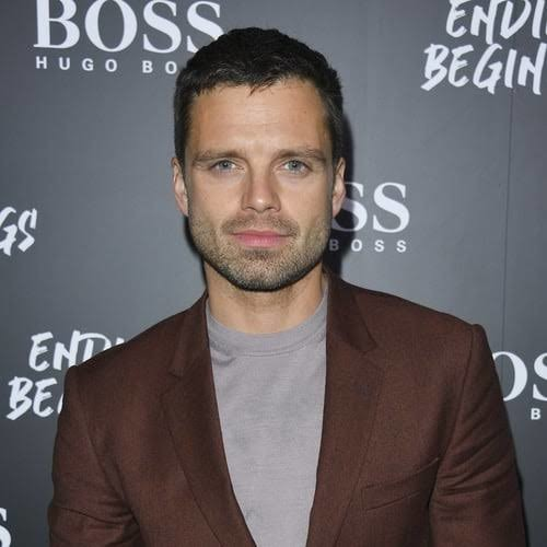 Sebastian Stan plays the role of Bucky Barnes in the series