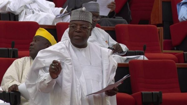 Nigerians Now Moving To Niger Republic For Safety - Senator