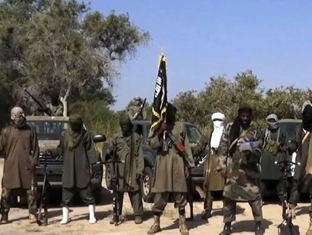 20 Killed, Others Injured As Boko Haram Attacks Borno Village