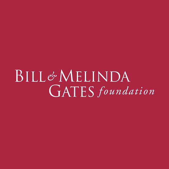 Gates Foundation Speaks On Alleged Sponsoring Of Infections Diseases Bill