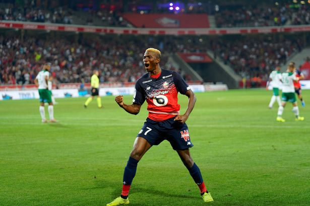 Victor Osimhen Crowned Lille's Best Player