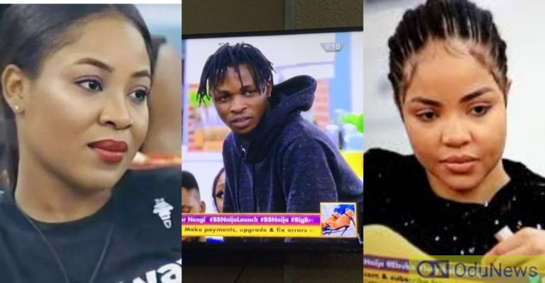 BBNaija: Laycon, Nengi, And Erica Dominate Google Searches