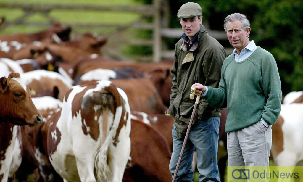 Britain's Prince William (L) and his father Prince Charles check