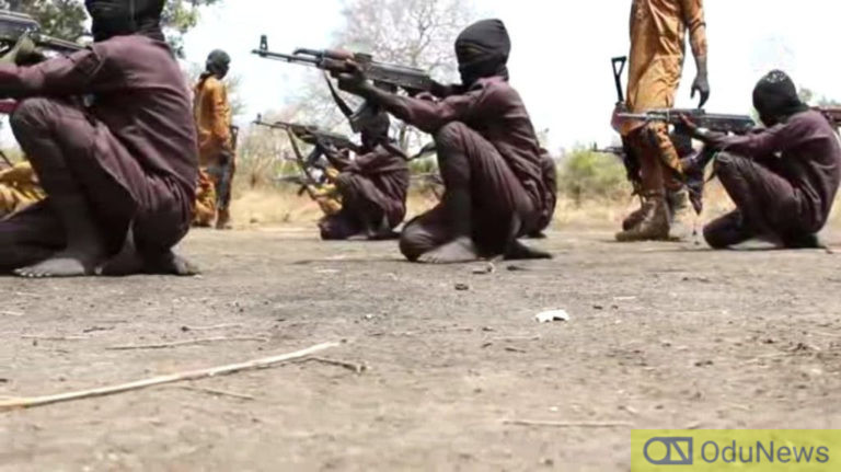 Boko Haram Releases Video Of Children Undergoing Combat Training